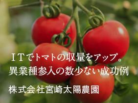 ITでトマトの収量アップ。異業種参入の数少ない成功例